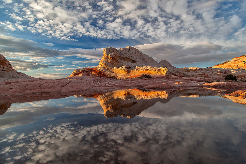 sandstone formation reflected in a still pool